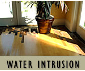 Florida Construction Water Intrusion Issues