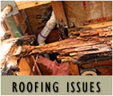 Florida Construction Roofing Issues
